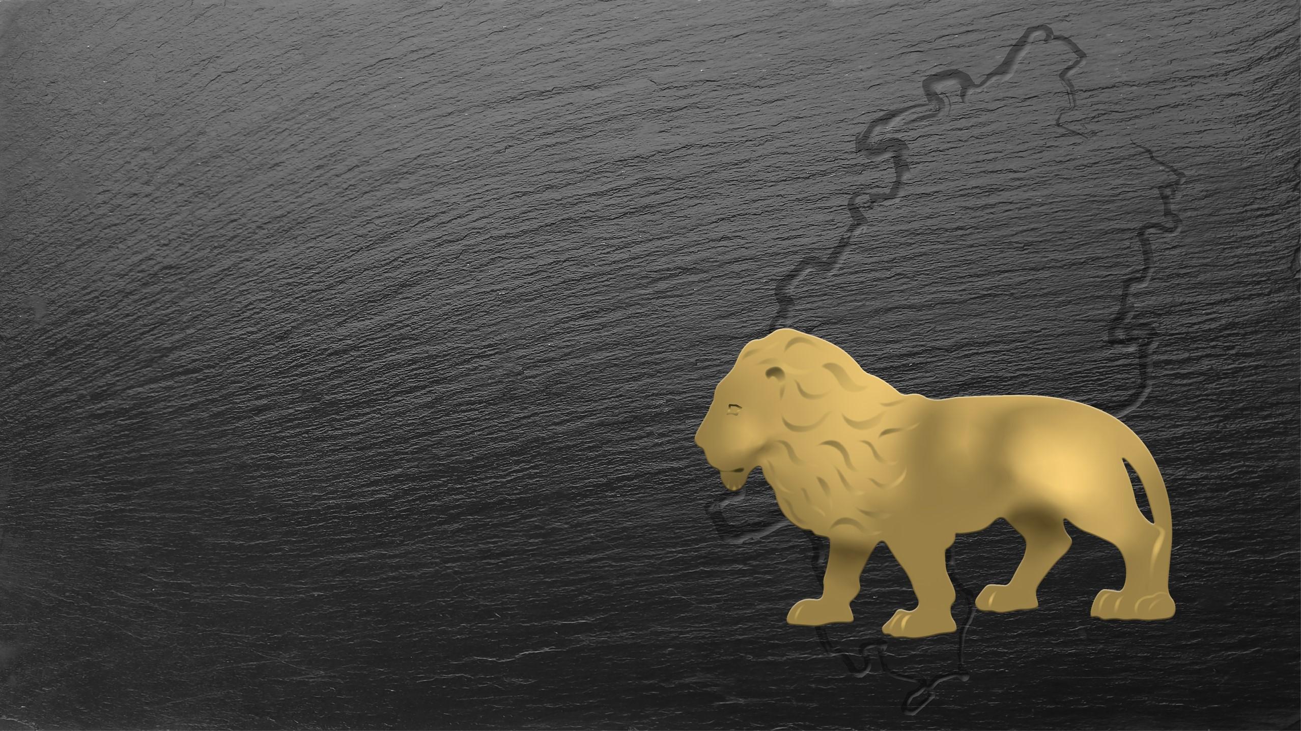 Titelbild zum Produktwettbewerb Der Goldene Qualileo